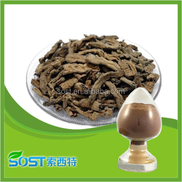 new product natural morinda citrifolia extract