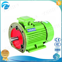 Squirrel Cage Vertical Mount AC Induction Motor 18.5kw
