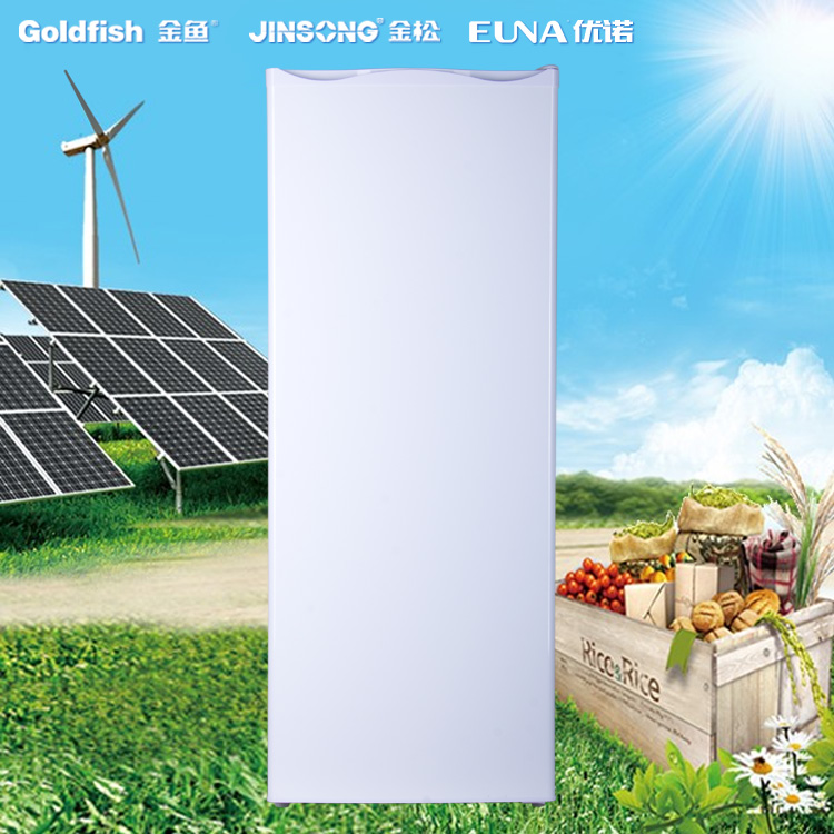 Exported Good Quality 175L Single-temperature OEM Single Door Electric Home DC Solar Freezer