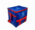 Wholesale new style disposable cooler ice bag