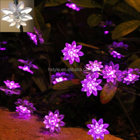 Solar Outdoor Lights String Purple 80 LEDs Double Lotus Flower for Party Wedding HNL012
