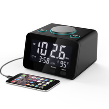 Multi-function Alarm Radio Clock, Indoor Thermometer, dual USB Charging port