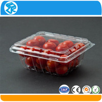 wholesale serving fruit and vegetable packaging trays design