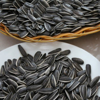 2014 cheap 5009 chinese black Sunflower seeds