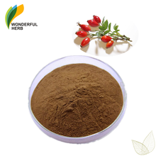 Low price bulk rose hips vitamin c extract powder supplement rosehip