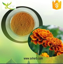 Herbal Extract Marigold Flower Extract 5% Lutein Powder / Natural Lutein Ester Power 5%-90% by HPLC