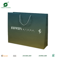 2013 NEW DESIGN PAPER CARRY BAG FP71038