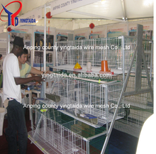 pvc coated or galvanized egg production equipment (ISO9001 factory)