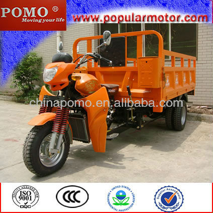 2013 Chinese New Selling Popular Petrol Cargo Cheap 250CC Three Wheel Motorcycle Automatic