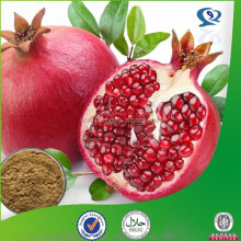 dry pomegranate seeds extract powder