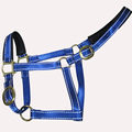 Waterproof Reflective Nylon Horse Halter All Colors Avaliable