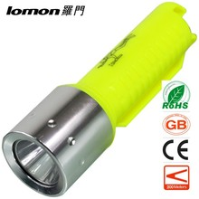Led Keyring Torch Toshiba Diving Torch Ophthalmic Torch Pen