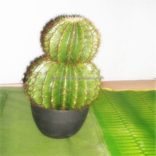 SJM091045 decoracion de alta calidad al por mayor 100% natural hoodia cactus artificial pe/tuna <span class=keywords><strong>planta</strong></span>