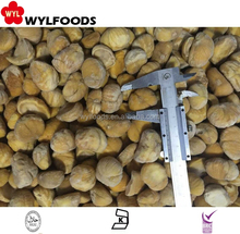 TOP SALE IQF frozen water chestnuts