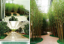 2014 best price hot sale artificial bamboo ,fake bamboo leaves, fake leaves