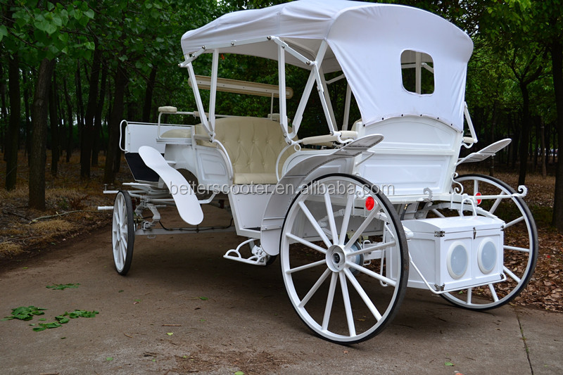 Wedding horse carriage with covers for two horses
