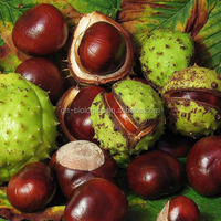Herbal Extract 98%Aescin Horse Chestnut Extract Powder