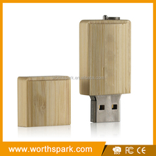 wooden 2GB actions hs usb flash disk driver