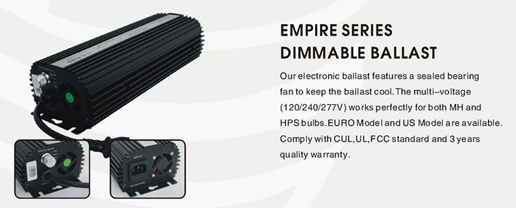 Factory sale various ballast electronic 600w