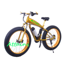 High quality long duration time pegasus electric bicycle bike Customized