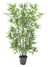 0123 bamboo decoration export(155cm height)