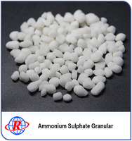 Excellent Price High Quality Ammonium Sulphate Fertilizer China Made