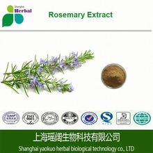 High quality best price rosmarinic acid/rosemary leaves/rosemary extract for antioxidant