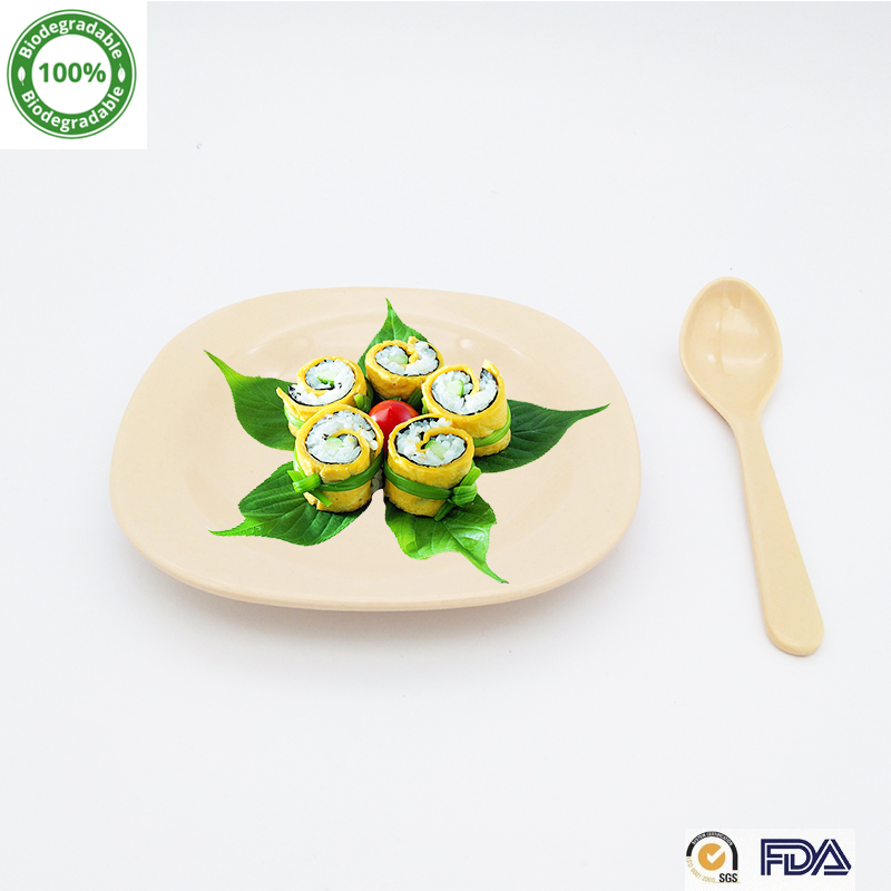 5.5 Inch <strong>Natural</strong> Organic 100% Biodegradable Bamboo Fiber Plate For Kids