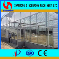 Plastic Film Greenhouse For Flowers