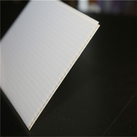 PC solid panel/Polycarbonate enduranced solid sheet