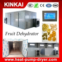 Wholesale Widely Used Fruit Drying Machine / Dried Fruit Machines / Dried Fruit Processing Machine