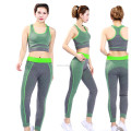 Ladies seamless sport wear stretch spandex fitness yoga wear