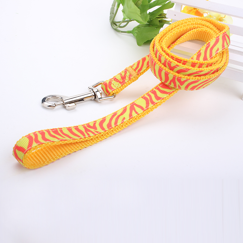 2019 Popular Design Wholesale Soft Nylon Pet Leash With Jacquard Label Durable Halloween Gift