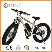 double battery long range electric mountain bicycle