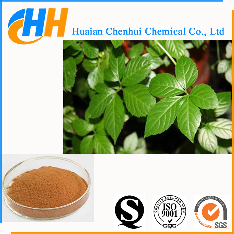 Natural herb 40%-98% Gypenosides gynostemma extract powder