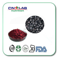 100% Natural Black Currant Extract/Anthocyanin 25%UV