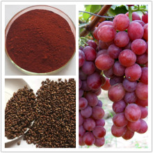 World-way Biotech provide organic grape seed extract