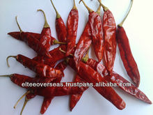 Guntur 334 Sannam dried red Chily Exporter to Canada