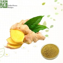 Factory Supply Natural Dry Ginger Rhizome Extract Ginger Extract Powder Gingerol Water Soluble