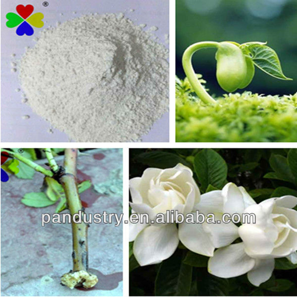 Water soluble powder 98%TC Sodium naphthalene acetic