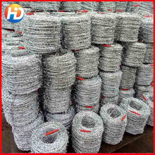 Electro and Hot dipped tie galvanized welded wire mesh fence (specialized manufacturer)