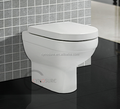 CY3206FM-Sanitary Ware wc toilet Floor Mounted Toilet