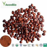Factory Supply Wholesale Semen Ziziphi Spinosae/Jujube Seed P.E