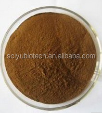 Supply High Quality Black Cumin Seed (Nigella Sativa) with free sample