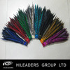 Wholesale Decorative Carnival Costume Real Feathers