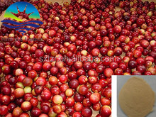 ISO9001 Supply Manufacture Camu Camu Powder