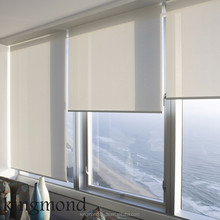 Smart Home Electric Curtain Window Shades
