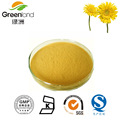 Factory Supply 100%Natural Bright eyesight Chrysanthemum Extract 5:1,10:1,20:1