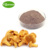 30%Polysaccharides Chanterelle Mushroom Extract Cantharellus cibarius Extract