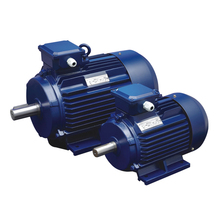 Y2 Electric motor IE2 3000RPM 1500RPM 1000RPM 750RPM 600PRM IEC Standard Y2 Series Three Phase Asynchronous Induction Motor